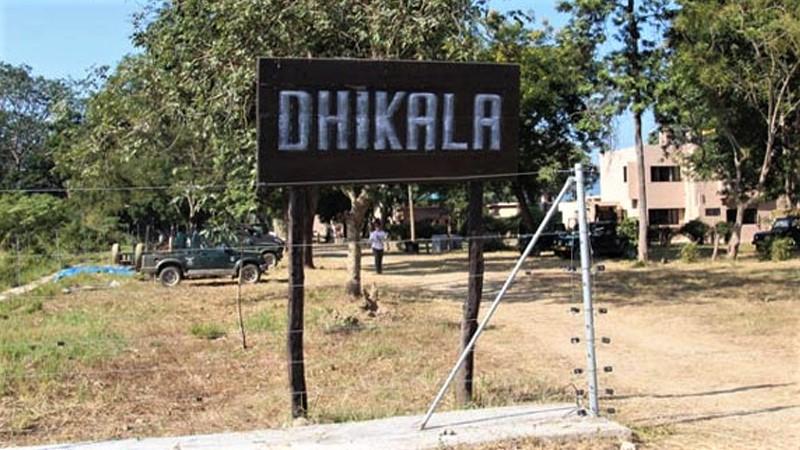 Dhikala Tour Package