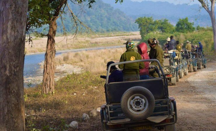 Corbett Jeep Safari Dhikala