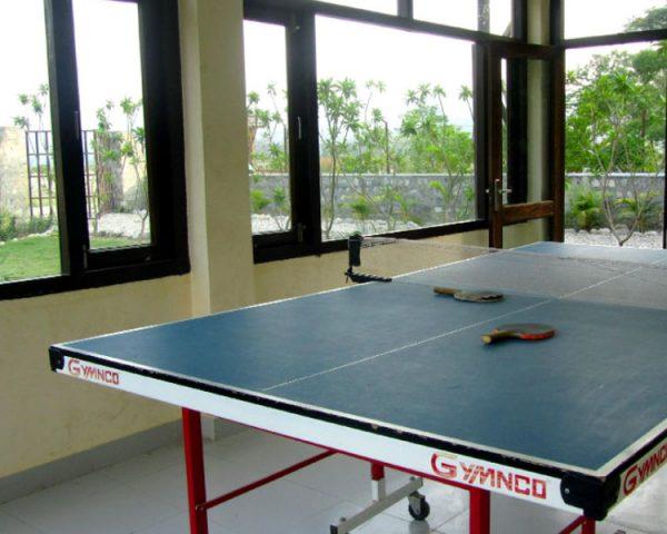 Corbett Mango Bloom Indoor Activity Area