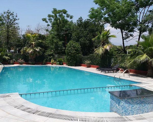 Tiger Groove Resort Swimming Pool