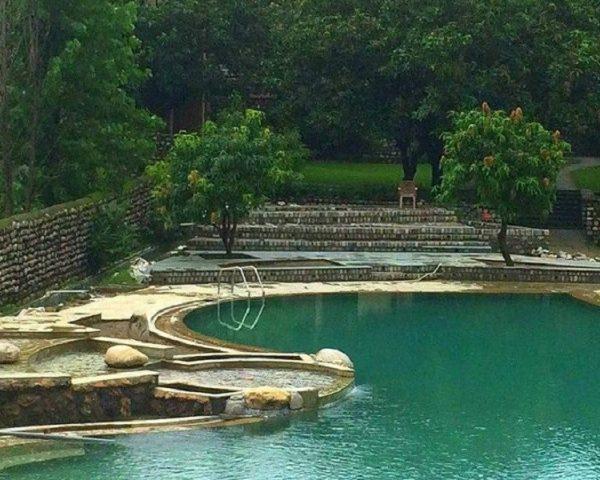 Swimming Pool Tiger Camp